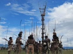 Catat! Aneka Operator yang Jual Paket Wisata Seru ke Papua