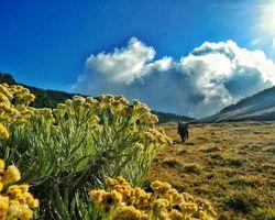 5 Gunung yang Cocok Untuk Dijelajahi Anak Muda