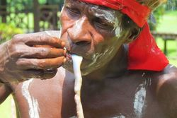 Liburan ke Papua, Coba Makan Cacing Tambelo