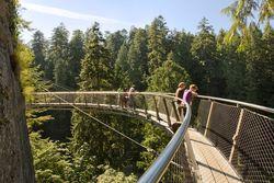 6 Jembatan Terkeren di Dunia Untuk Wisatawan Pejalan Kaki