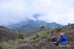 Beberapa Gunung di Indonesia yang Bisa Didaki Dalam 1 Hari