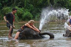 Aneka Paket Tur Keliling Bangkok dalam 1 Hari