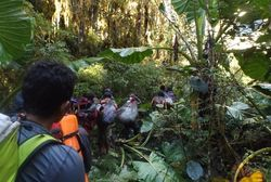 Hari ke-9: Menghadapi Porter yang Emosi di Tengah Hutan Papua