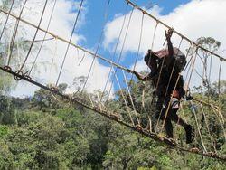 Hari ke-7: Jembatan Rotan, Tantangan Pertama Mendaki Carstensz