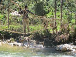 Jembatan Rotan yang Menegangkan di Papua