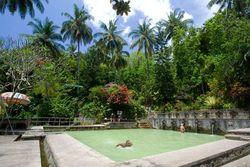 Mau Mandi Air Panas di Bali, Ini Tempatnya!