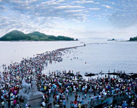 Hasil carian imej untuk laut Jindo Korea