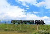 Perjalanan Klasik dengan Kereta Uap di Ambarawa