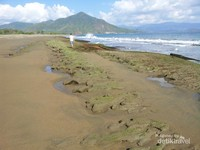 Ketika air pantai surut pengunjung dapat berjalan kaki di bibir pantai ini sampai ke ujung anak gunung batu