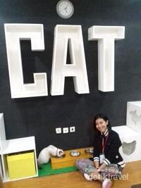 Salah satu interior di Cats and Ice Cream
