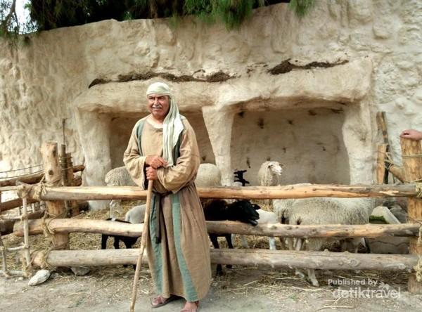 Gembala dengan kandang ternaknya