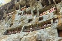 Inilah Pemakaman Toraja yang Terkenal