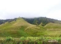 Memang Cantik Bukit Teletubbies di Bromo