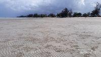 Pohon-pohon cemara laut (yang oleh penduduk lokal disebut pohon ru) membuat suasan pantai kian elok, ditambah angin yang bertiup pelan.
