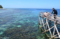 Pulau Seloang. Salah Satu Pulau berpenduduk di Kepulauan Balabalakang. hanya ada fasilitas sekolah dasar yang cukup memprihatinkan. Pulau ini dikelilingi hamparan terumbu karang yang luas dan indah sekali.