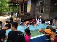 Para traveler sedang memperhatikan tukik-tukik lucu di pulau Sangalaki