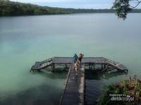 Danau Kakaban memiliki area yang sangat luas dengan pemandangan yang indah.