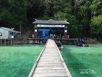 Di area dermaga Pulau Kakaban juga memiliki keistimewaan, airnya bening dan punya beberapa spot snorkling