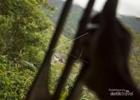 Wisatawan membunyikan pentungan di Pos 3 pertanda bahwa ada tamu yang akan datang ke Desa Wae Rebo