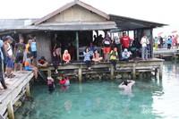 Antusiasme pengunjung di kolam hiu