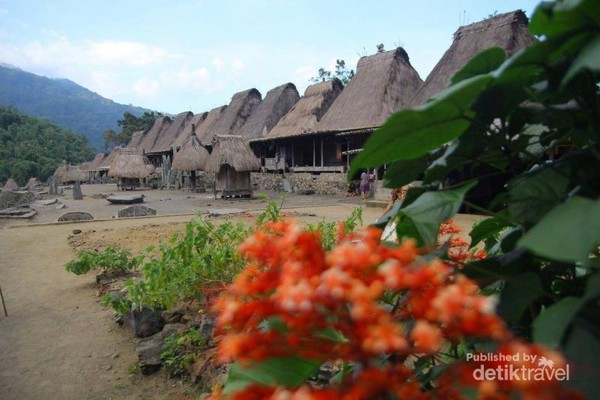 Desa Bena di antara bunga indah yang berada di perkampungan