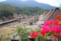 Keindahan Indonesia terangkum dalam panorama  Desa Bena dari ketinggian, yang memperlihatkan Desa Bena secara keseluruhan