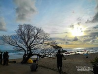 Pohon duras dengan background sunset  yang menjadi ciri khas Pantai Pok Tunggal.