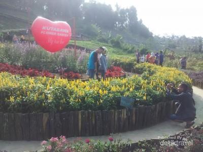 Ini Kebun yang Hits di Purbalingga