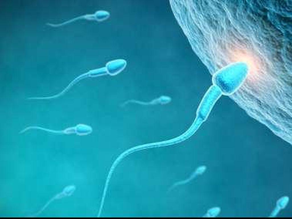 Sperma Bercampur Darah Saat Hubungan Intim, Gejala Apa?