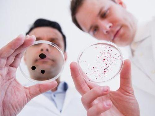 Tahun 2050, Infeksi Bakteri Diprediksi Lebih Mematikan Dari Kanker
