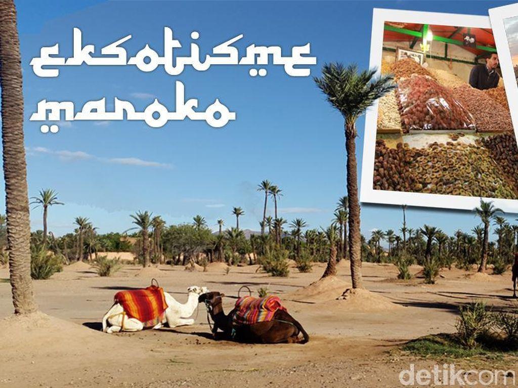 Bertualang ke Marrakesh