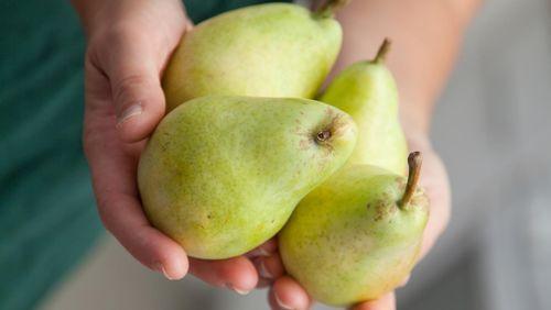 9 Alasan Sehat Buah Pir Harus Ada di Mangkuk Anda