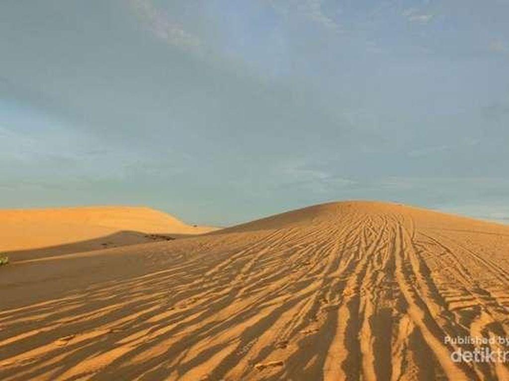 Vietnam Juga Punya Padang Pasir Seperti di Dubai