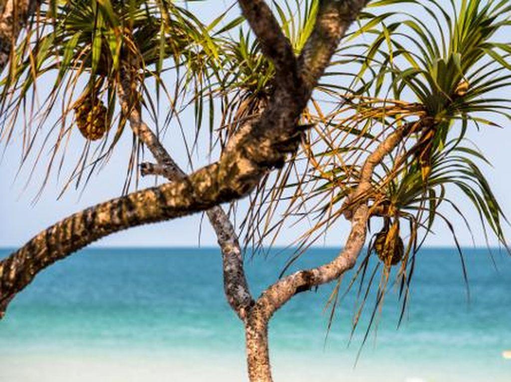 5 Kawasan Pantai Cantik di Vietnam