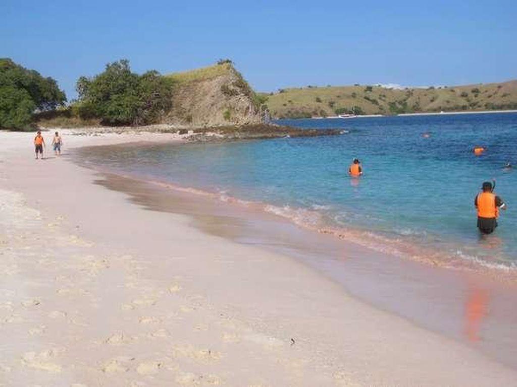 Terpesona Cantiknya Pink Beach di Pulau Komodo