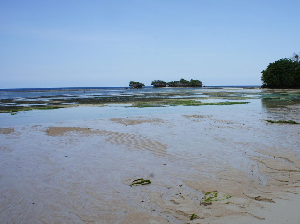 Wah, Ada Pantai dengan Seratusan Mata Air Tawar di Wakatobi