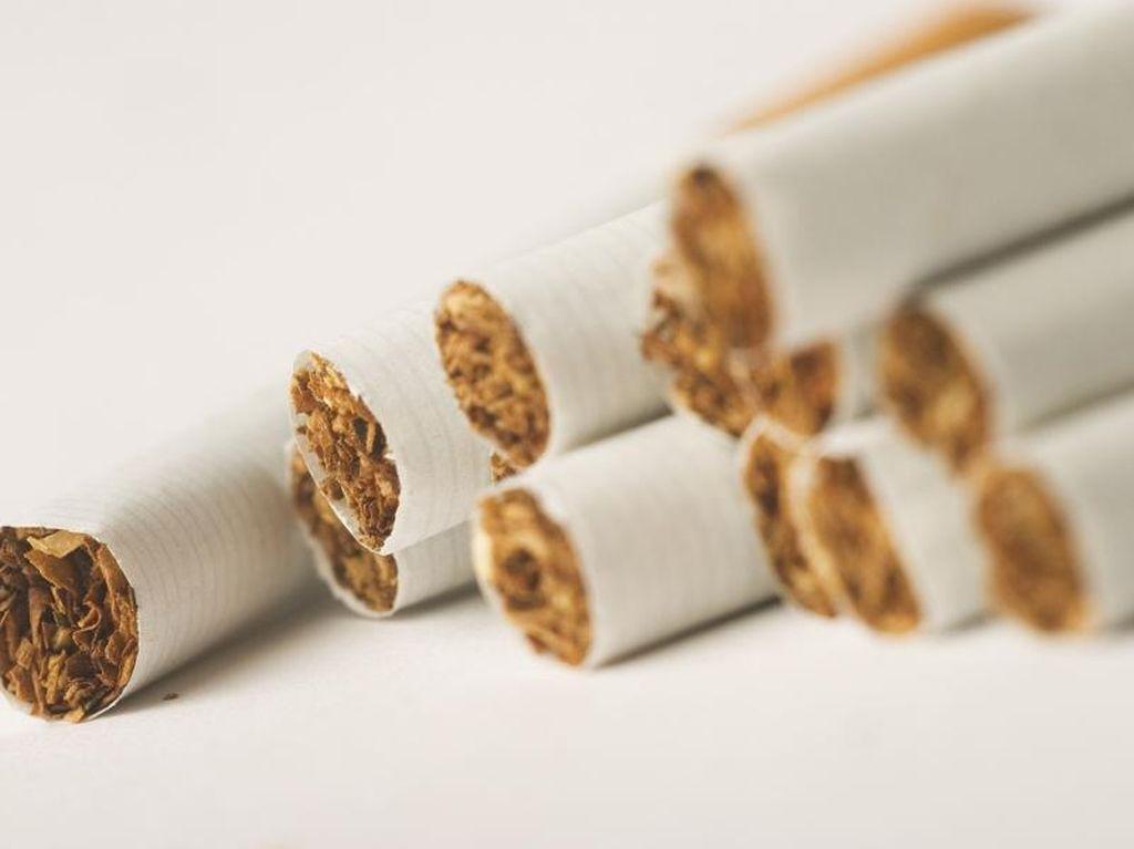 Rokok VS Liburan, Apa Kata Traveler?