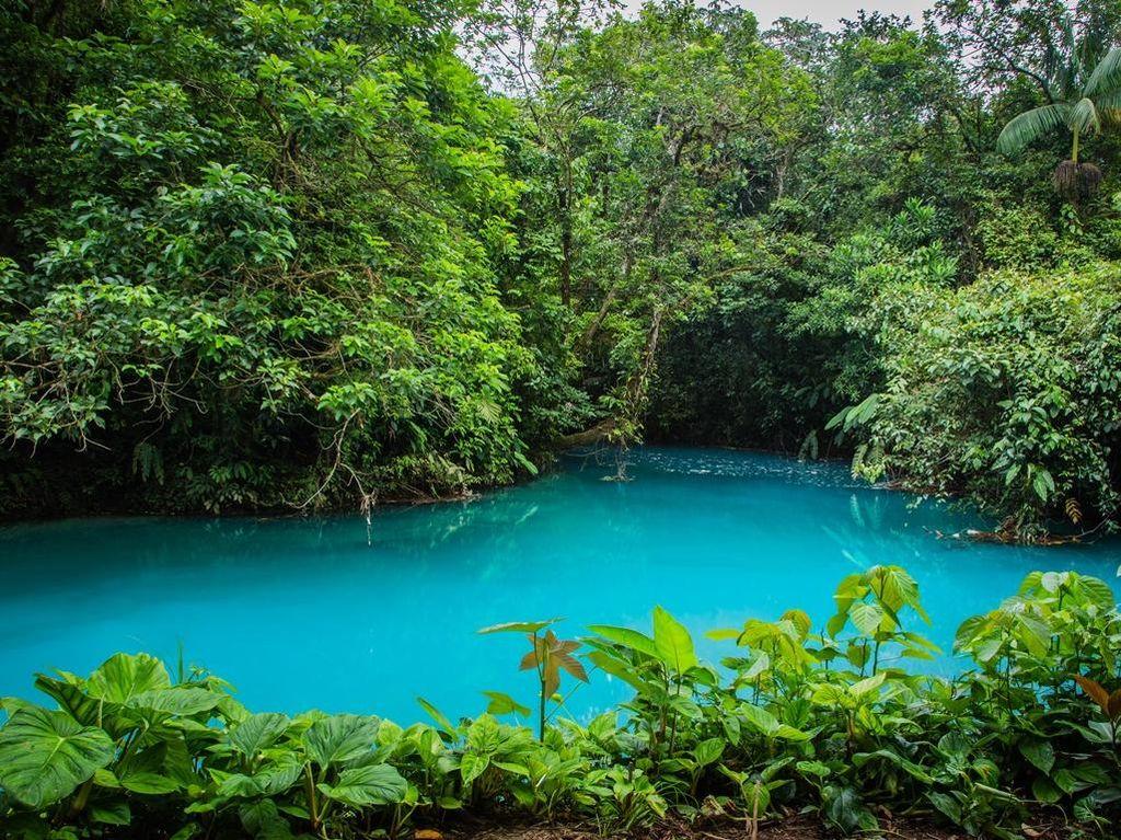 Sungai Paling Biru Sedunia di Kosta Rika