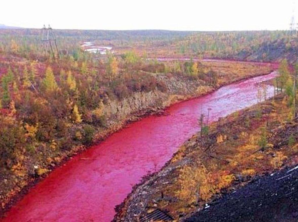 Misteri Sungai yang Berwarna Merah Darah di Rusia