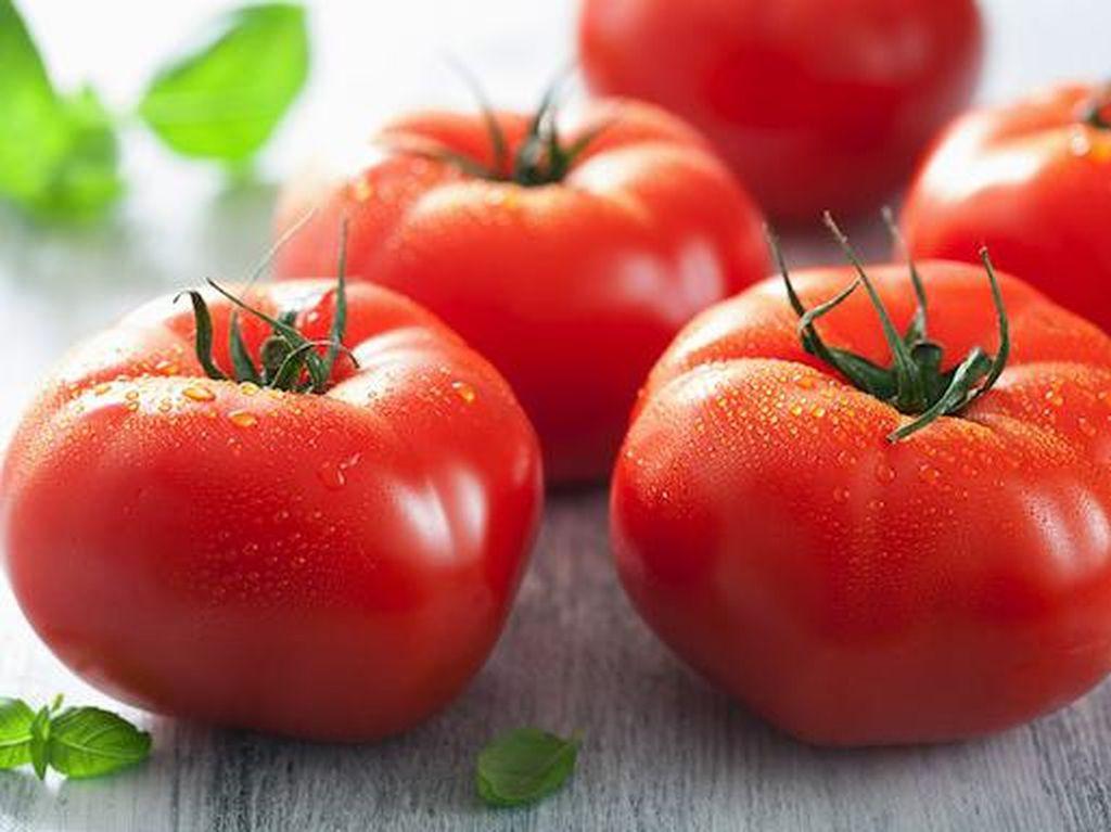 Ini Cara Mudah Menyimpan Tomat Agar Tak Cepat Layu