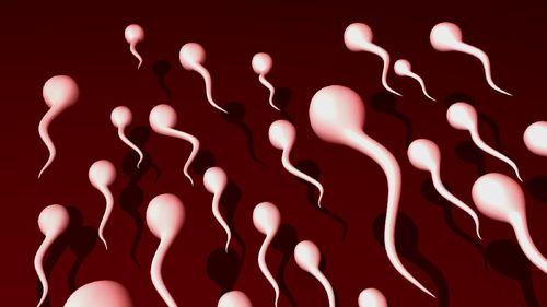 Diet yang Dianjurkan untuk Pria Agar Sperma Jadi Berkualitas