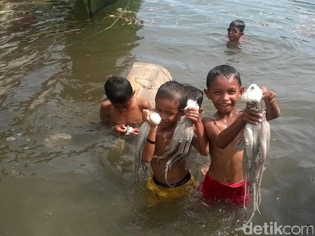 Uniknya Indonesia, Anak Kecil di Wakatobi Tangkap Gurita Pakai Tangan