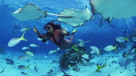 Ini Dia 7 Tips Diving di Tulamben