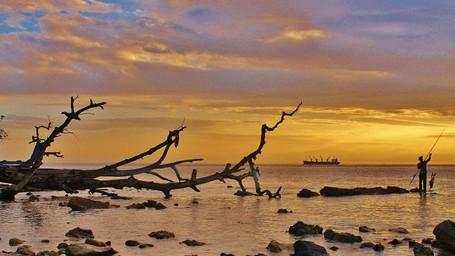 Asyiknya Snorkeling di Pulau Tikus Nan Eksotis di Bengkulu