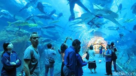Dubai Memindahkan Laut Ke Dalam Mal
