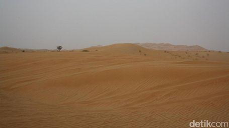 Kecantikan Gurun Pasir Timur Tengah