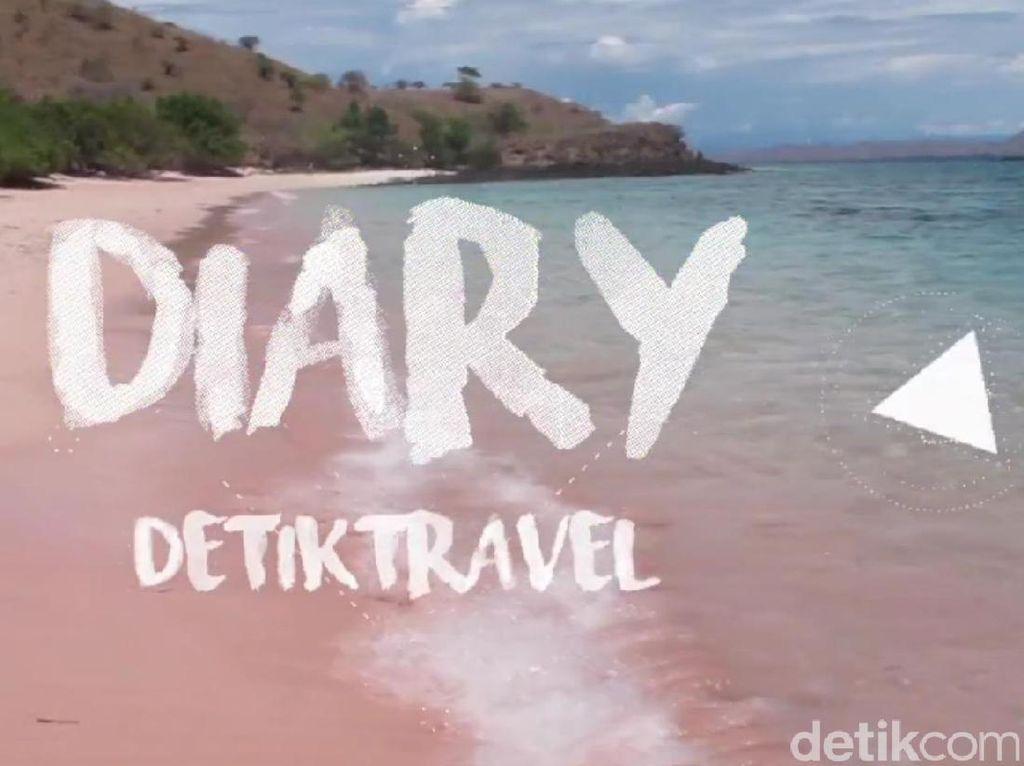 Diary detikTravel: Pengalaman Lihat Komodo Melahap Mangsa
