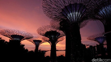 Pohon Ajaib Di Gardens By The Bay Singapura