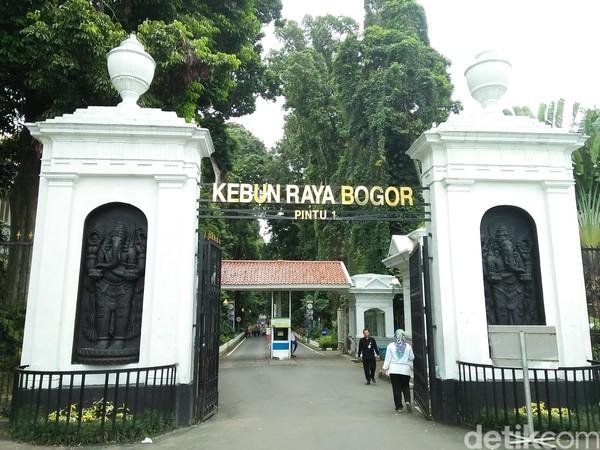Jalan-jalan Sehat, Yuk Berakhir Pekan di Kebun Raya Bogor