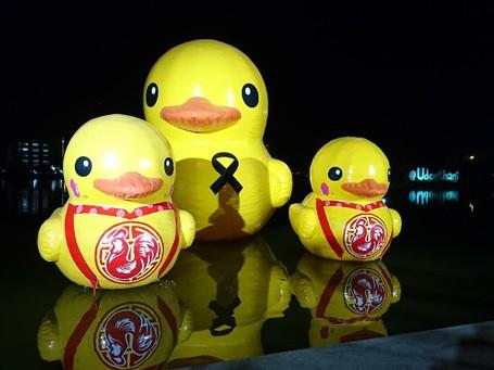 Sudah Tahu, Bebek Adalah Ikon Wisata Udon Thani Thailand?